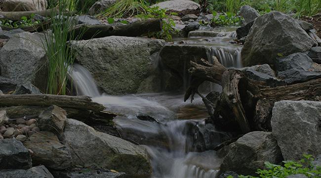 Bedford Hills Pondless Waterfalls