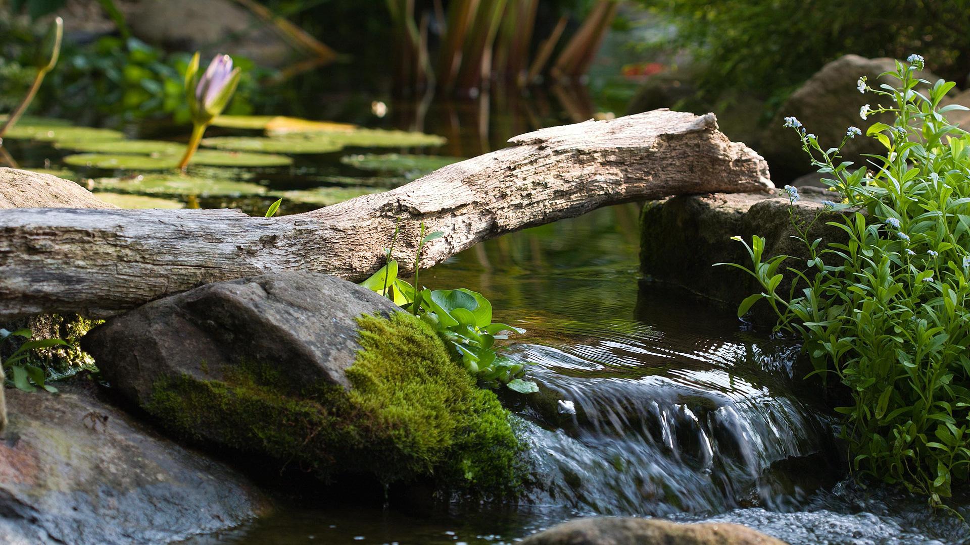 AquaScapes East Landscaping, Pond Contractor and Landscape Design slide 2